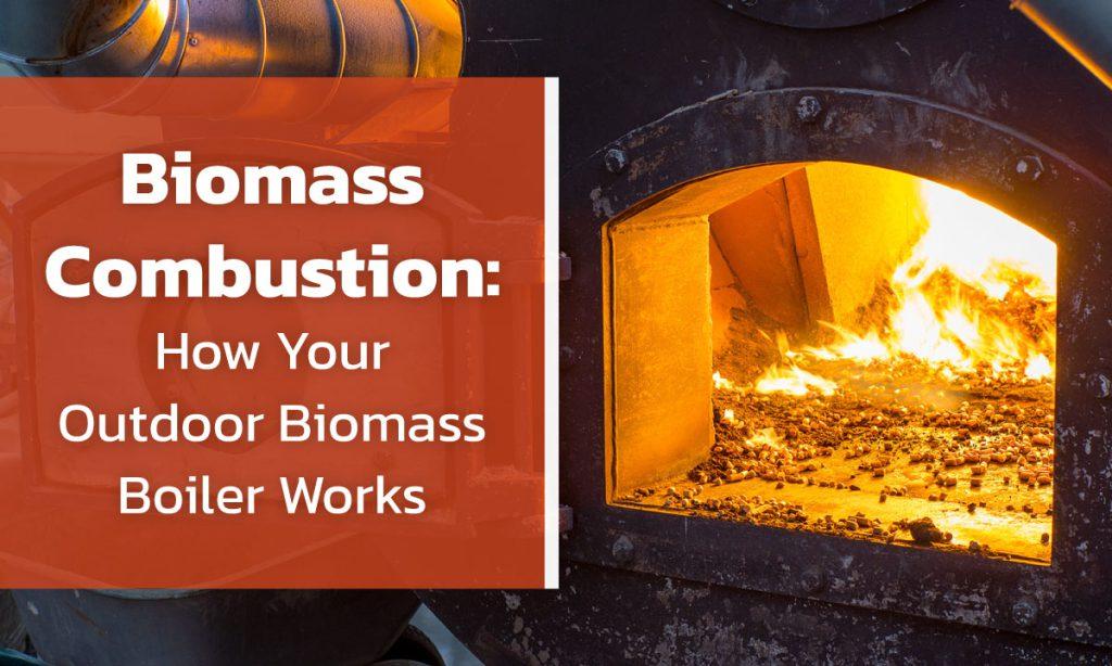 Biomass Version 1