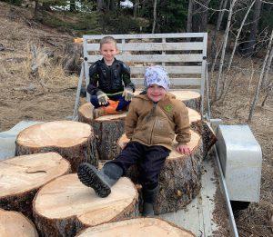 Zell Wood Logs